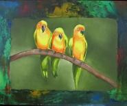 Små papegøjer