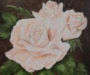 hvid-rose